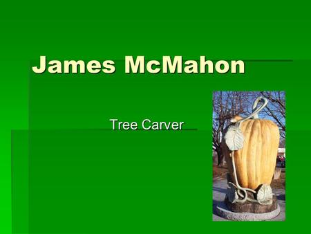 James McMahon Tree Carver. What do you see in the next 4 slides?