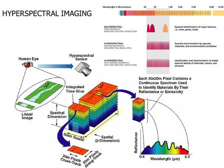 HYPERSPECTRAL IMAGING. nemo.nrl.navy.mil NEMO satellite COIS sensor instrument Navy Earth Map Observer Characterization of world littoral regions demonstrate.