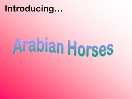 Introducing…. The Arabian horse is the oldest known breed of riding horses. This horse breed came from the Middle East, but is now one of the most popular.