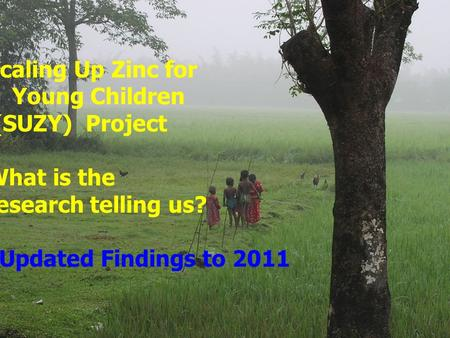 Scaling Up Zinc for Young Children (SUZY) Project What is the research telling us? Updated Findings to 2011.