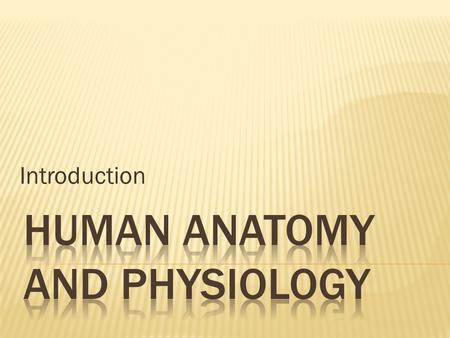 Introduction.  Anatomy-study of the structure and shapes of body parts and their relationship to one another.  Physiology-how the body and its parts.