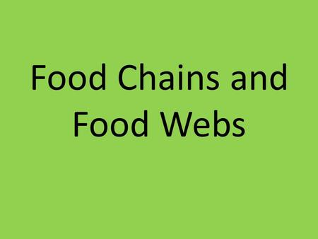 Food Chains and Food Webs. Why do scientists study food chains? Scientists study food chains to see how energy flows through organisms Where do we get.