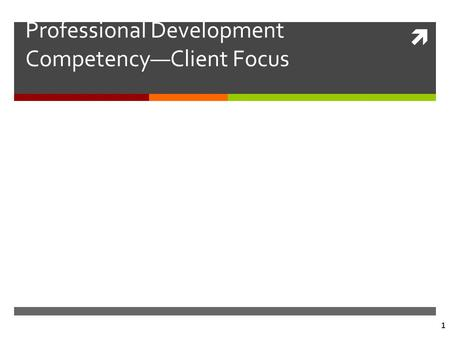  1 Professional Development Competency—Client Focus.