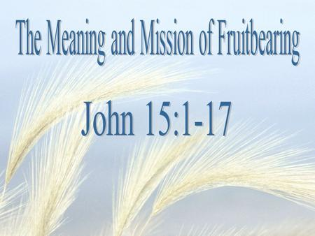  Is it the fruit of the Holy Spirit? Gal 5:22 But the fruit of the Spirit is love, joy, peace, patience, kindness, goodness, faithfulness,