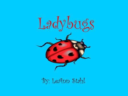 Ladybugs By: LeAnn Stahl. Parts of a Ladybug Fun Facts There are about 5,000 different kinds of Ladybugs. Ladybugs make a chemical that smells & tastes.