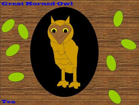 Tea Great Horned Owl. Description Coloring: Size: Physical Characteristics: Source #___23______ A Great Horned Owl has brown, white, and black ear tufts.