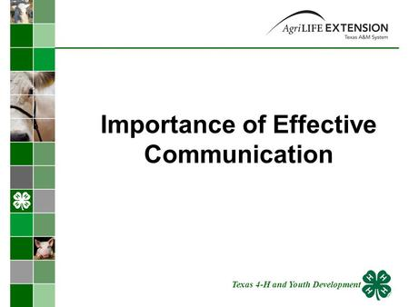 Importance of Effective Communication Texas 4-H and Youth Development.