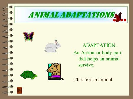 Animal Adaptations ADAPTATION: An Action or body part that helps an animal survive. Click on an animal.