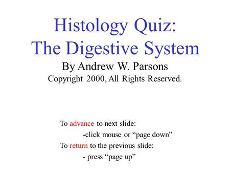 Histology Quiz: The Digestive System By Andrew W