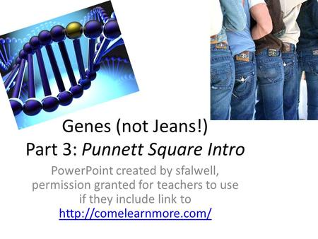 Genes (not Jeans!) Part 3: Punnett Square Intro PowerPoint created by sfalwell, permission granted for teachers to use if they include link to