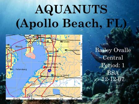 AQUANUTS (Apollo Beach, FL) Bailey Ovalle Central Period: 1 BSA 12-12-07.