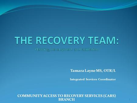 Tamara Layne MS, OTR/L Integrated Services Coordinator COMMUNITY ACCESS TO RECOVERY SERVICES (CARS) BRANCH 1.