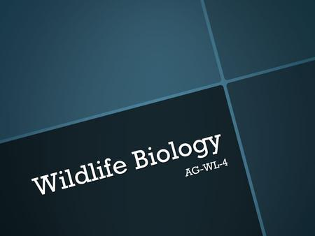 Wildlife Biology AG-WL-4. Reflection  What did you learn from yesterday's activity?