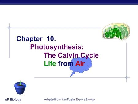 AP Biology Adapted from: Kim Foglia, Explore Biology Chapter 10. Photosynthesis: The Calvin Cycle Life from Air.