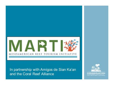 In partnership with Amigos de Sian Ka'an and the Coral Reef Alliance.