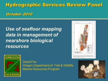 Hydrographic Services Review Panel October 2010 David Fox Oregon Department of Fish & Wildlife Marine Resources Program Use of seafloor mapping data in.