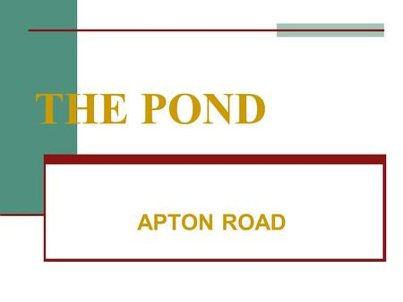 THE POND APTON ROAD. WHY SAVE IT WILDLIFE BEAUTY HISTORY.