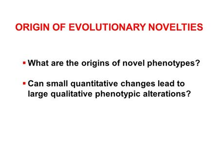 ORIGIN OF EVOLUTIONARY NOVELTIES  What are the origins of novel phenotypes?  Can small quantitative changes lead to large qualitative phenotypic alterations?