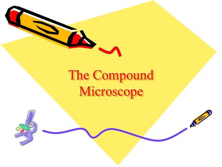 The Compound Microscope. A. Eyepiece B. Body Tube C. Coarse Adjustment D. Fine Adjustment E. Arm F. Revolving Nosepiece G. High Power Objective H. Low.