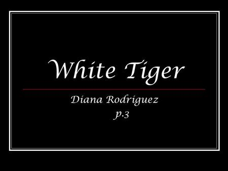 White Tiger Diana Rodriguez p.3. Basic Information.White Tigers are rarely found in the wild of India.in about 100 years only 12 have been seen in India,they.