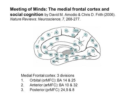 Meeting of Minds: The medial frontal cortex and social cognition by David M. Amodio & Chris D. Frith (2006). Nature Reviews: Neuroscience, 7, 268-277.
