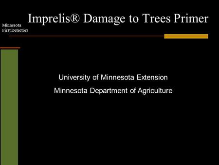 Minnesota First Detectors Imprelis® Damage to Trees Primer University of Minnesota Extension Minnesota Department of Agriculture.