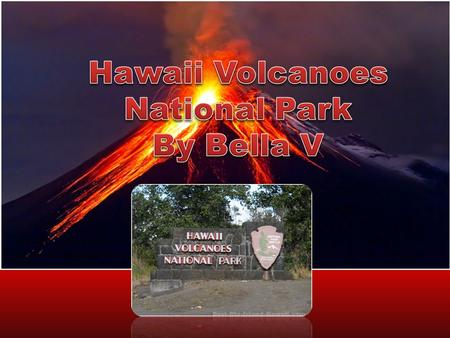 What year did the Park become an official National Park and why? On August 1, 1916, The Hawaii Volcanoes became a National Park. President Woodrow Wilson.