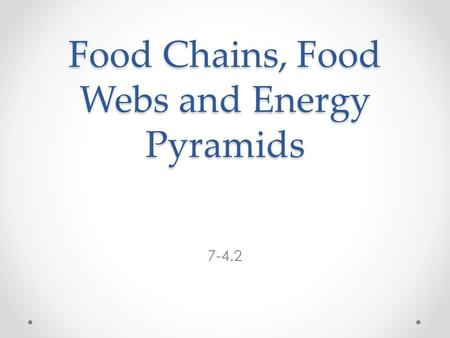 Food Chains, Food Webs and Energy Pyramids 7-4.2.