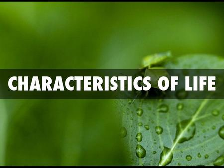 "Characteristics of Living Things The word BIOLOGY means ""the study of life."" Biology seeks to understand the living world. Biology is part of everyday."