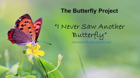 "The Butterfly Project ""I Never Saw Another Butterfly"""