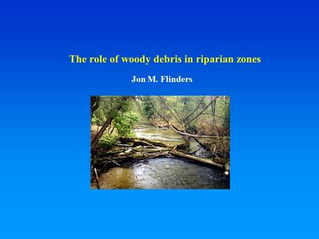 The role of woody debris in riparian zones Jon M. Flinders.
