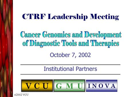 © 2002 VCU CTRF Leadership Meeting October 7, 2002 Institutional Partners V C U G M U I N O V A.