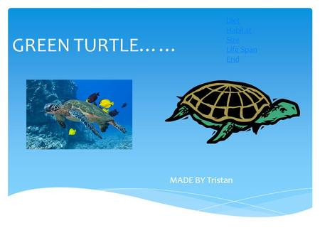 GREEN TURTLE…… MADE BY Tristan Diet Habitat Size Life Span End.