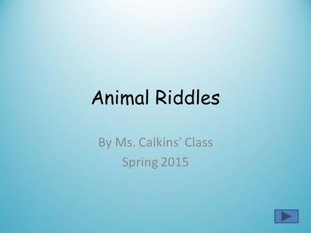 Animal Riddles By Ms. Calkins' Class Spring 2015.