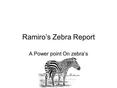 Ramiro's Zebra Report A Power point On zebra's. What is a zebra? Zebras were the second species to diverge from the earliest proto-horses Zebras are part.