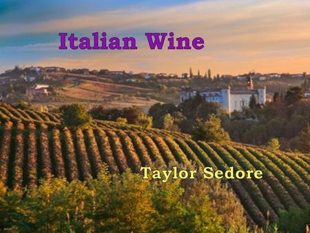 Italian Wine Culture Wine is used on every occasion, including dinner Italian wine is made for savoring, not large consumptions Need a gift? Give a bottle.