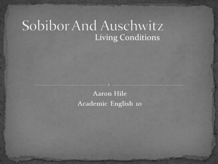 Aaron Hile Academic English 10 Living Conditions.