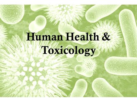 Human Health & Toxicology. Three Major Categories Physical – Natural disasters Biological – disease Chemical – Natural or synthetic * Most deaths.