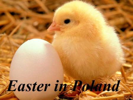 Easter in Poland. Easter holiday is a special period in the year. Catholic Church recognizes this holiday as the most important in the whole year. Majority.