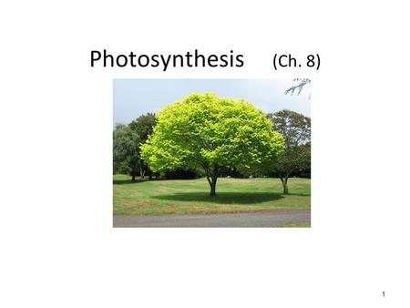 Photosynthesis (Ch. 8) 1. ATP (for energy!) ATP = adenosine triphosphate ATP is the molecule that DIRECTLY provides energy to do cellular work Chemical.