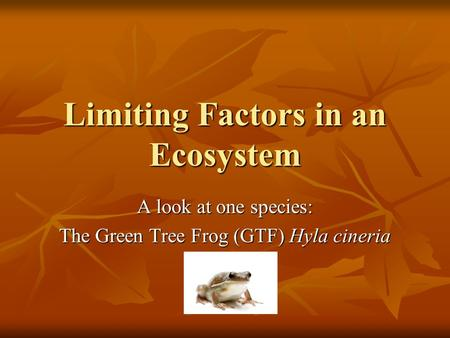 Limiting Factors in an Ecosystem A look at one species: The Green Tree Frog (GTF) Hyla cineria.