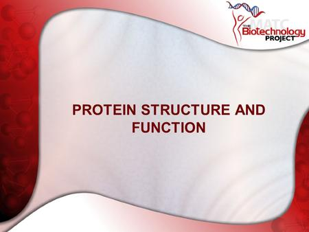 PROTEIN STRUCTURE AND FUNCTION. Proteins Are Where It's At Proteomics Gene regulation Drug Discovery Understanding evolution Etc.