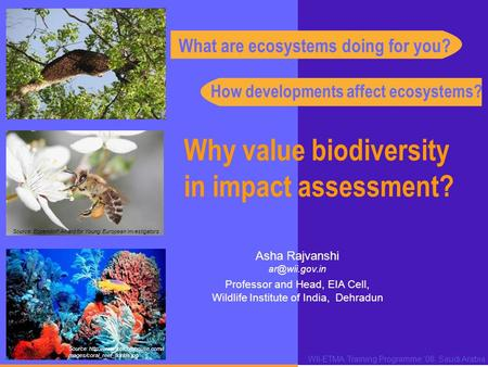 Why value biodiversity in impact assessment? WII-ETMA Training Programme '08, Saudi Arabia Asha Rajvanshi Professor and Head, EIA Cell, Wildlife.