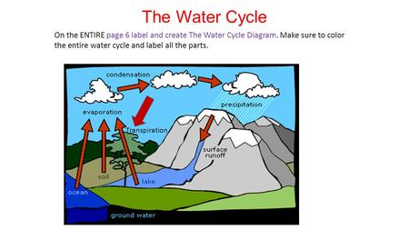 The Water Cycle On the ENTIRE page 6 label and create The Water Cycle Diagram. Make sure to color the entire water cycle and label all the parts. Transpiration.