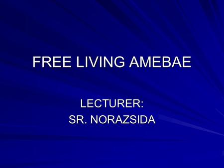 FREE LIVING AMEBAE LECTURER: SR. NORAZSIDA. INTRODUCTION A large and diverse group of protozoan organisms. Inhabit fresh and salt water. Decaying organic.