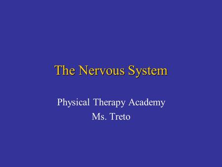 The Nervous System Physical Therapy Academy Ms. Treto.