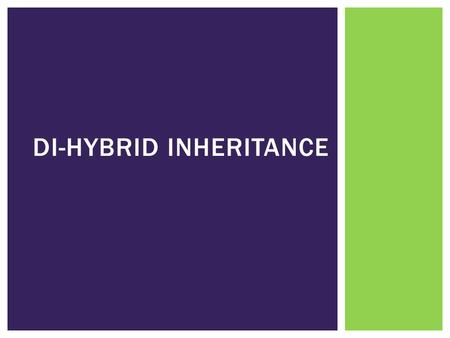DI-HYBRID INHERITANCE.  **Only complete dominance is assessed at this level** DI-HYBRID INHERITANCE.