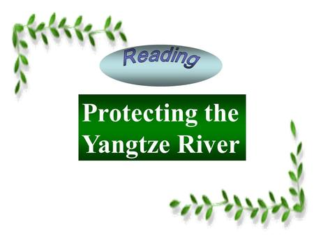 Protecting the Yangtze River. Protecting the Yangtze River P1: Raising the issue The environmental problems of the Yangtze River have raised concern.