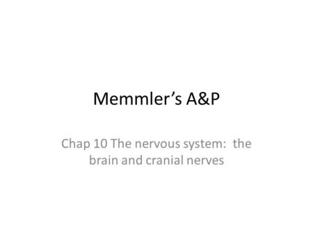Chap 10 The nervous system: the brain and cranial nerves