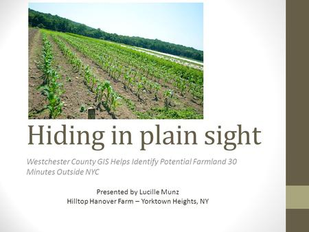 Hiding in plain sight Westchester County GIS Helps Identify Potential Farmland 30 Minutes Outside NYC Presented by Lucille Munz Hilltop Hanover Farm –